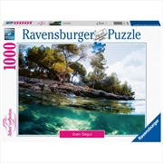 Points Of View 1000 Piece Puzzle   Merchandise