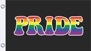 Pride Flag 3'X5' | Merchandise