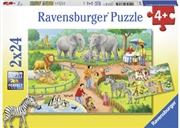 Ravensburger - A Day at the Zoo Puzzle 2x24pc | Merchandise