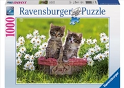 Ravensburger - Picnic in the Meadow Puzzle 1000pc | Merchandise
