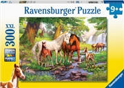Horses By The Stream 300pc | Merchandise