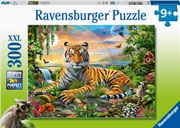Tiger At Sunset 300pc | Merchandise