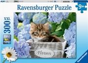 Tortoiseshell Kitty 300 Piece Puzzle | Merchandise