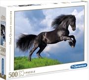 Fresian Black Horse | Merchandise