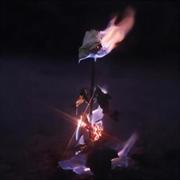 Momentary Glow | CD