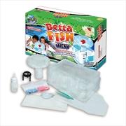 Betta Fish Arena | Toy