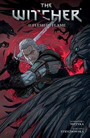 The Witcher Volume 4 | Paperback Book