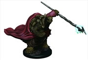 Dungeons & Dragons - Icons of the Realms Male Tortle Monk Premium Miniature | Games