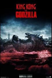 Godzilla vs Kong | DVD