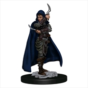 Pathfinder - Human Rogue Female Premium Figure | Games