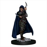 Pathfinder - Human Rogue Female Premium Figure | Games