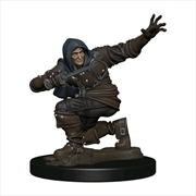 Pathfinder - Human Rogue Male Premium Figure | Games