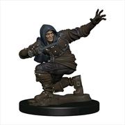 Pathfinder - Human Rogue Male Premium Figure | Games
