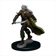 Pathfinder - Elf Fighter Male Premium Figure | Games