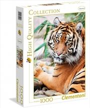 Sumatran Tiger 1000 Piece Puzzle | Merchandise
