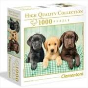 Labrador 1000 Piece Puzzle | Merchandise