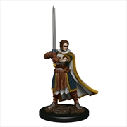 Dungeons & Dragons - Premium Human Fighter Male Miniature | Games