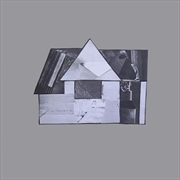 Home   Vinyl