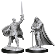 Dungeons & Dragons - Nolzur's Marvelous Unpainted Minis: Human Paladin Male | Games