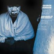 White Rabbit   CD