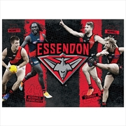 Essendon Bombers 4 Player 1000 Piece Puzzle | Merchandise