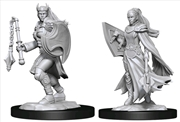 Dungeons & Dragons - Nolzur's Marvelous Unpainted Miniatures: Kalashtar Cleric Female | Games