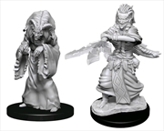 Dungeons & Dragons - Nolzur's Marvelous Unpainted Miniatures: Night Hag & Dusk Hag | Games