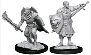 Pathfinder - Deep Cuts Unpainted Miniatures: Human Champion Male | Games