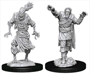 Dungeons & Dragons - Nolzur's Marvelous Unpainted Miniatures: Scarecrow & Stone Cursed | Games