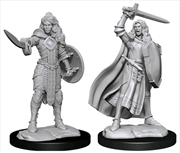 Pathfinder - Deep Cuts Unpainted Miniatures: Human Champion Female | Games