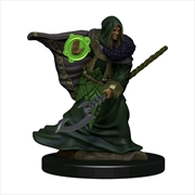 Dungeons & Dragons - Icons of the Realms Premium Elf Druid Male | Games