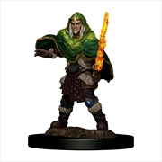 Dungeons & Dragons - Icons of the Realms Premium Elf Fighter Male | Games