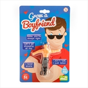 Grow A Boyfriend | Toy