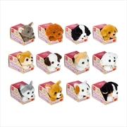 Petooties Dogs 2 Plush Toy (SENT AT RANDOM) | Merchandise