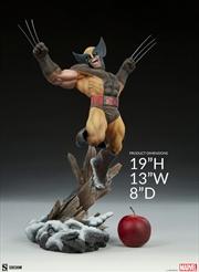 X-Men - Wolverine Premium Format Statue   Merchandise