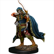Dungeons & Dragons - Icons of the Realms Elf Rogue Male Premium Figure | Merchandise