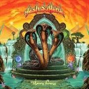 Terra Firma | Vinyl