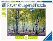 Birch Forest Puzzle 1000 Piece Puzzle   Merchandise