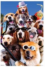 Random Galaxy - Dog Selfie | Merchandise
