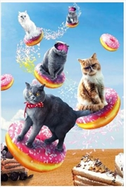 Random Galaxy - Cats Riding Donuts | Merchandise