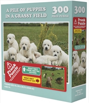 A Pile Of Puppies In A Grassy Field - Prank Puzzle 300 pieces | Merchandise