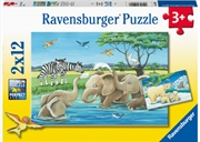Baby Safari Animals Puzzle  2 X 12 Piece   Merchandise