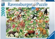 Jungle Puzzle 2000 Piece Puzzle | Merchandise