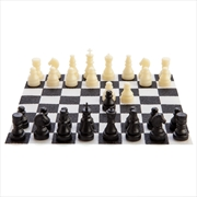 Worlds Smallest Chess Set | Toy