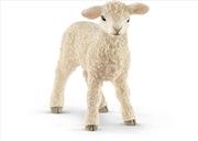 Schleich-Lamb | Merchandise