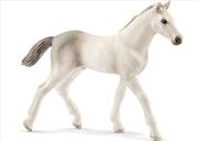 Schleich - Holsteiner Foal   Merchandise