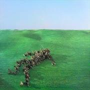 Bright Green Field | CD