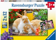 Guinea Pigs And Bunnies Puzzle  2 X 12 Piece   Merchandise