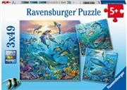 Ocean Life 3 X 49 Piece Puzzle   Merchandise