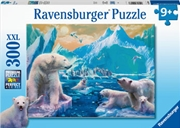 Polar Bear Kingdom 300 Piece Puzzle   Merchandise
